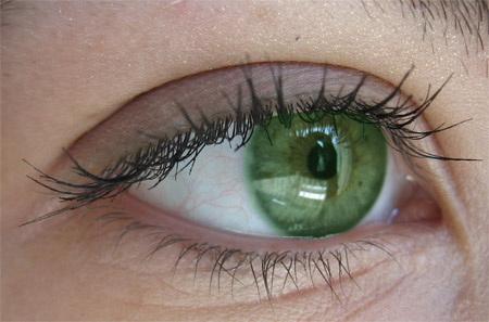 травмы глаза - первая медицинская помощь