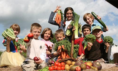Как приучить детей к здоровому питанию?