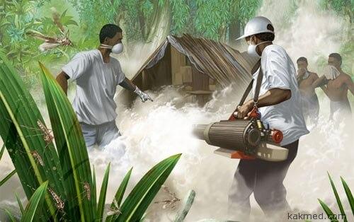 Война с малярией