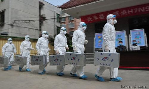 Китайская зондеркоманда идет убивать кур