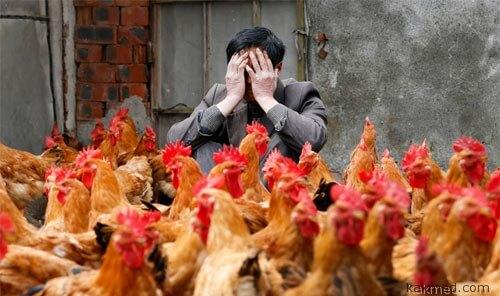 Китай весь в убытках