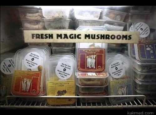 Лицензия на грибы