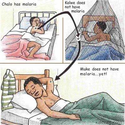 Реклама малярии