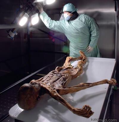 Раковые мумии мэйд ин Иджипт