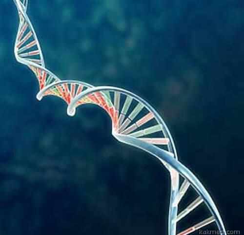 РНК-терапия