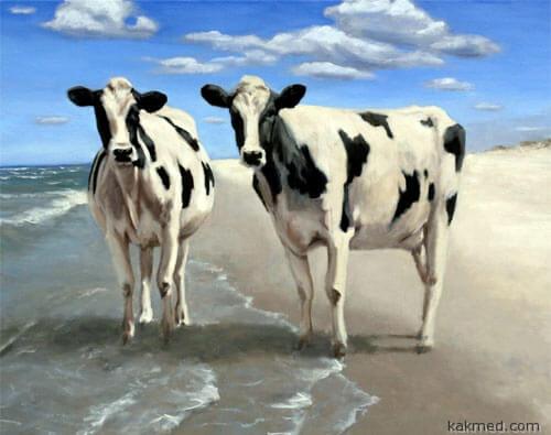 Коровы йод дают