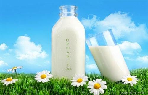 Органическое молоко полезно или вредно?