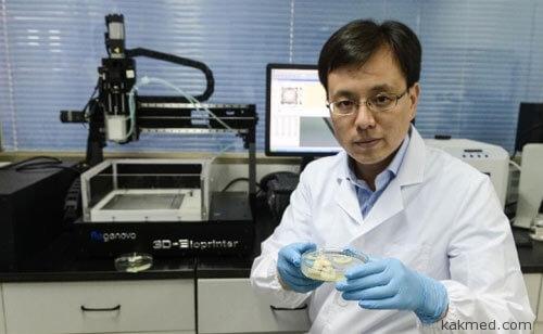Китайцы напечатали искусственные почки