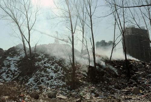 Тех, кто сжигает мусор, надо сжигать вместе с мусором