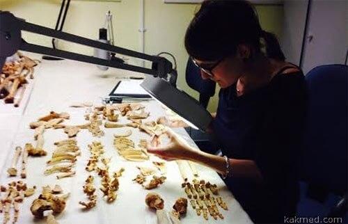 Микаэла Биндер изучает рак у древнего нубийца