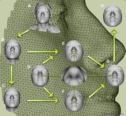 Реконструкция внешности по ДНК