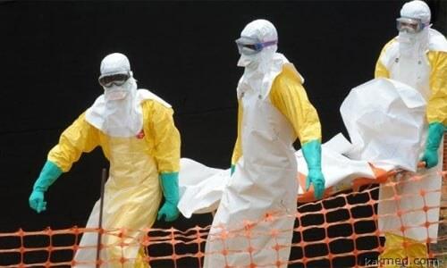 Эбола в Мали