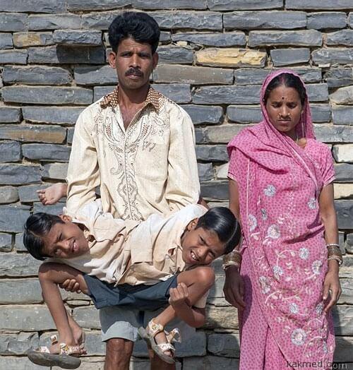Близнецы и их родители