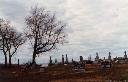 Репрезентативная выборка мертвых циников