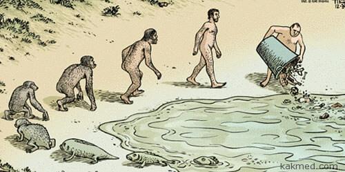 Цикл эволюции