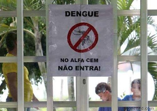 Денге в Бразилии