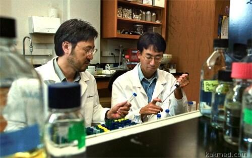 Доктор Каваока мастерит новый вирус