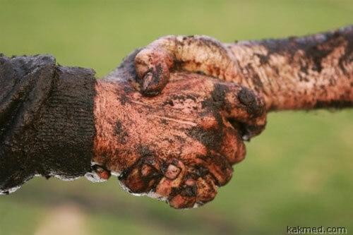 Бактерии любят рукопожатие