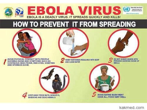 Как не заболеть лихорадкой Эбола