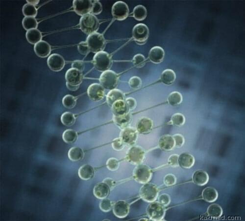 Бесполезные гены