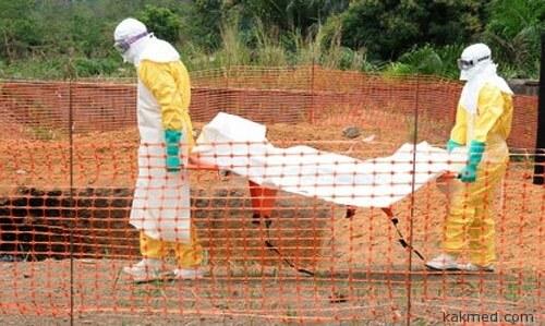 Очередная жертва Эбола