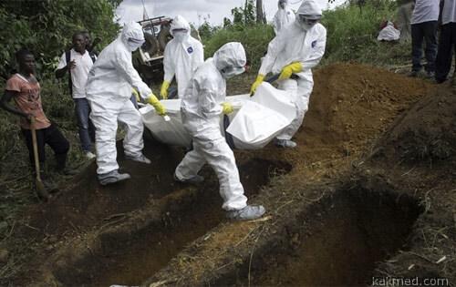 Эбола это смерть