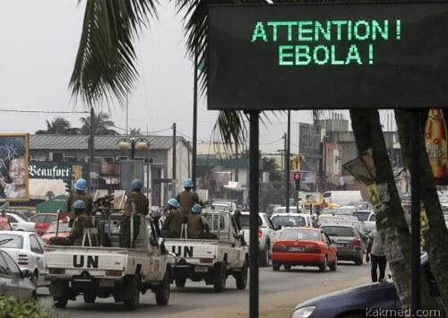 Гвинея эбола