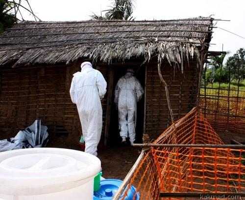 Эбола рейд