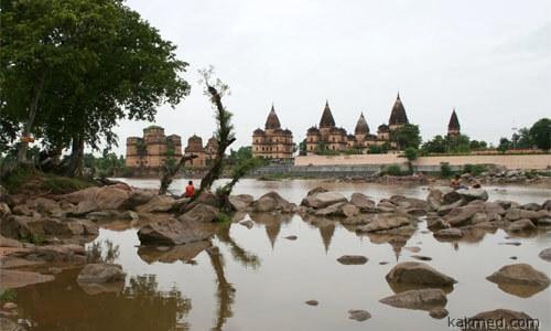 Курьезный случай в Мадхья-Прадеш