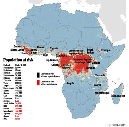 Потенциал лихорадки Эбола в Африке