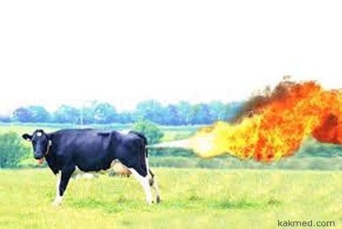 Метановое загрязнение