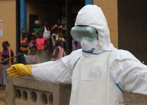 Эбола 2014