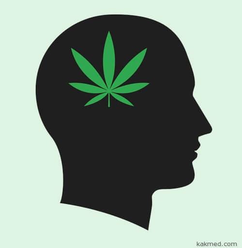 Интеллект и марихуана