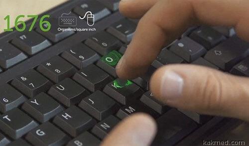 Клавиатура полна бактерий и вирусов, мышь - тоже