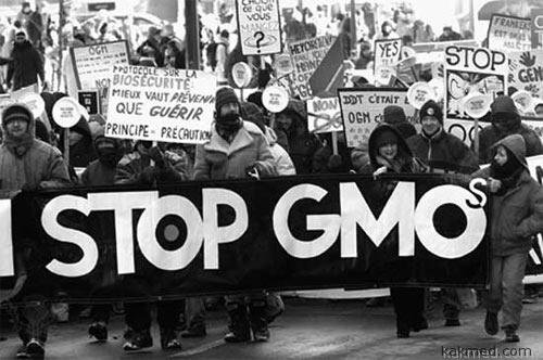 ГМО ЧМО