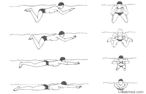 техника плавания брассом