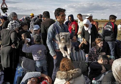 Мигранты в Дании