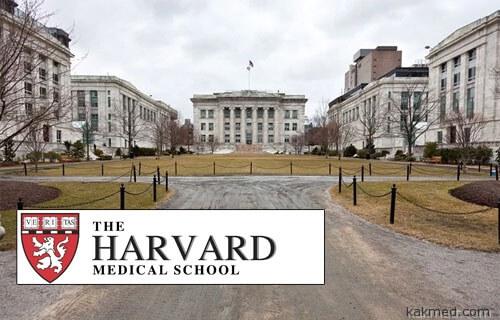 Медицинская школа Гарварда