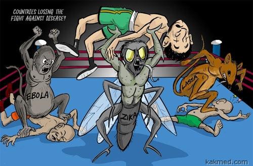 Вирусы лупят сапиенсов