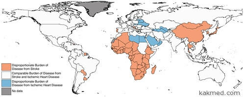 Мировая карта инсультов