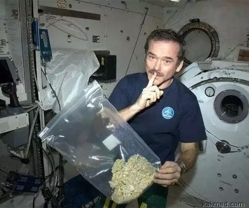 01-cannabis-in-space