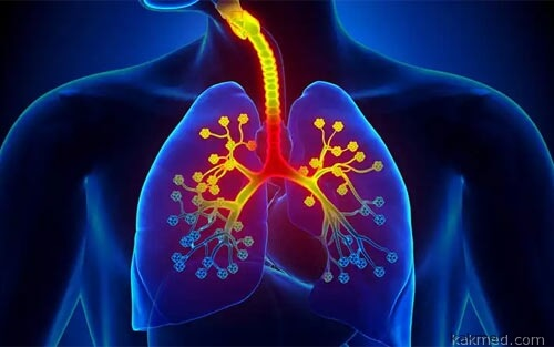 02-asthma-lungs