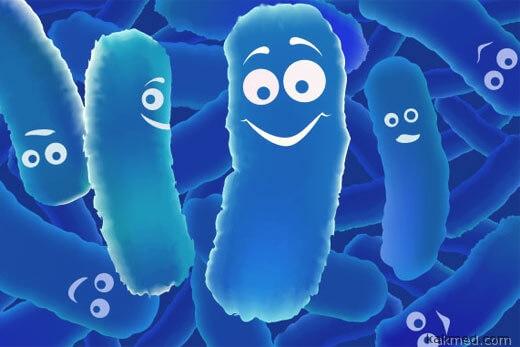 правда о пробиотиках